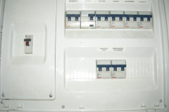 DSCN6519